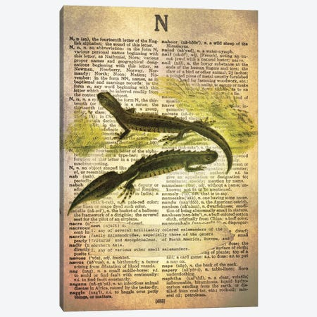 N - Newt Canvas Print #AALP28} by 5by5collective Canvas Artwork