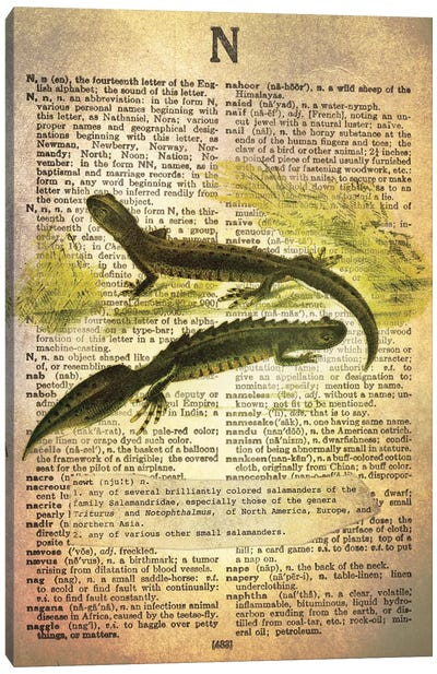 N - Newt Canvas Art Print