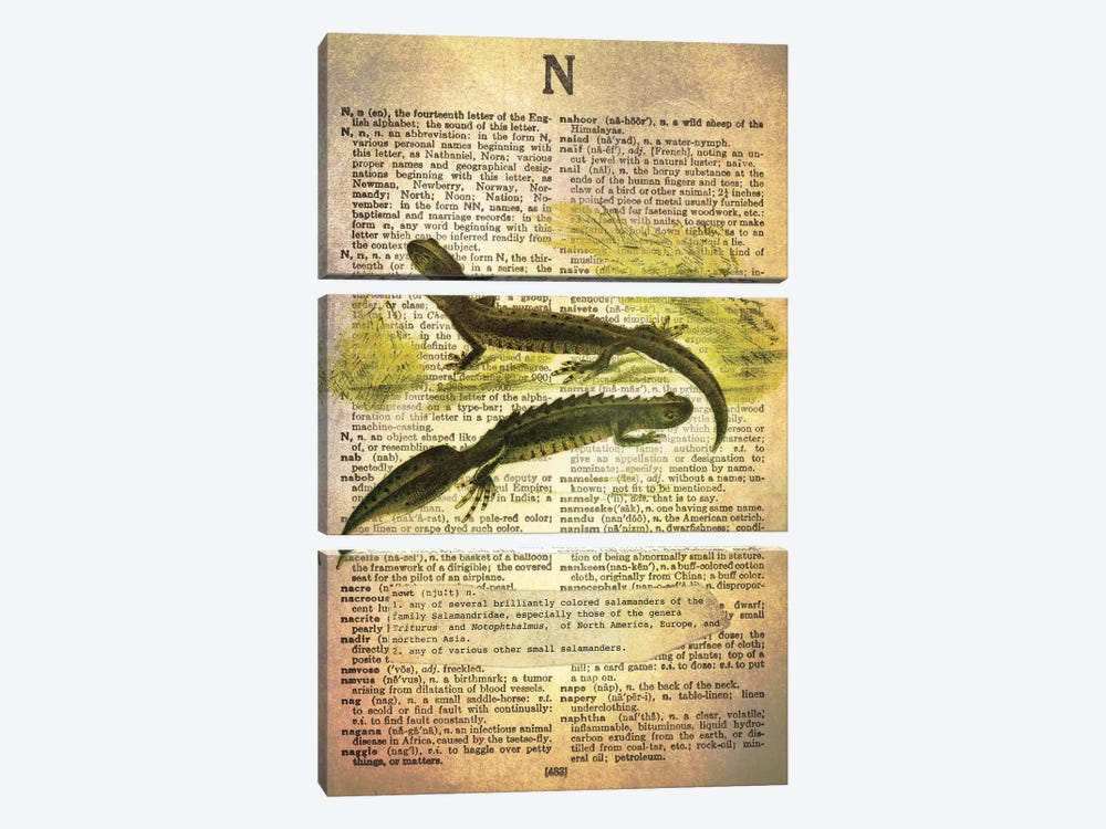 N - Newt by 5by5collective 3-piece Canvas Art