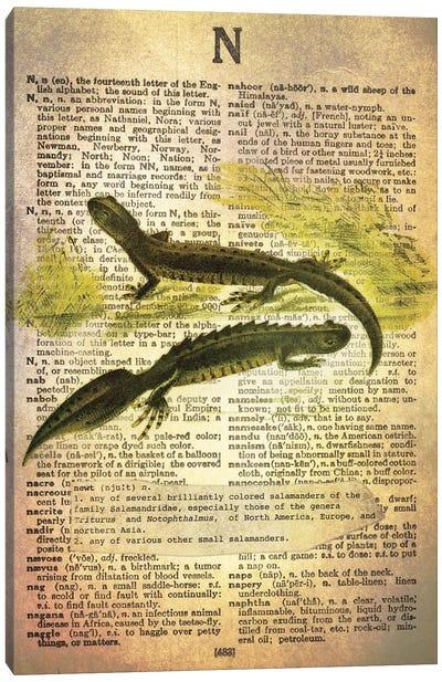 N - Newt Canvas Art Print