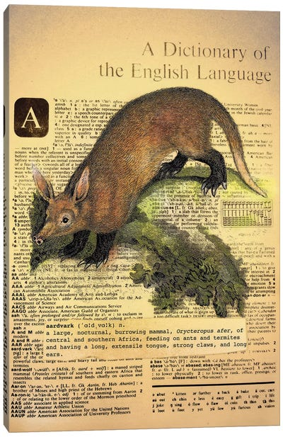 A - Aardvark Canvas Art Print