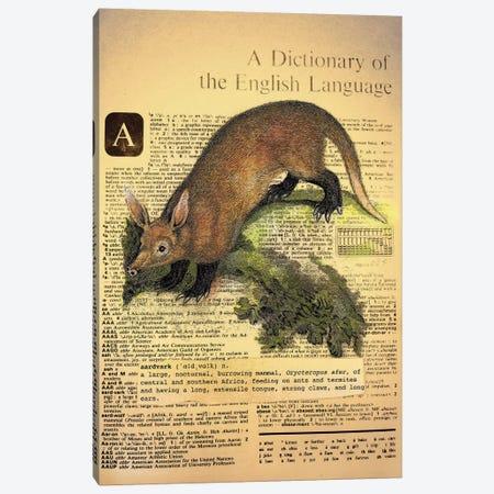 A - Aardvark Canvas Print #AALP2} by 5by5collective Art Print