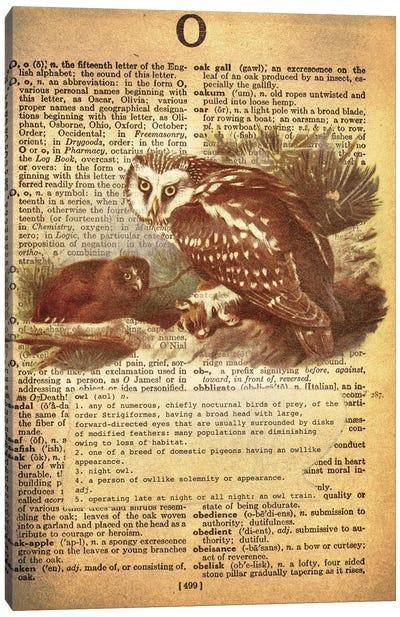 O - Owl Canvas Art Print