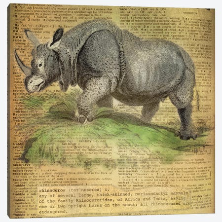 R - Rhino Square Canvas Print #AALP35} by 5by5collective Canvas Art