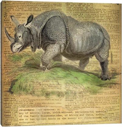 R - Rhino Square Canvas Art Print