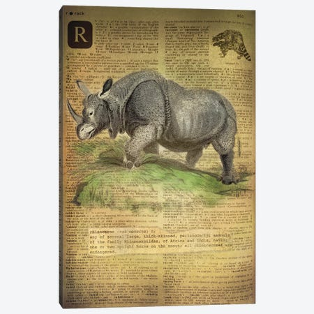 R - Rhino Canvas Print #AALP36} by 5by5collective Canvas Artwork