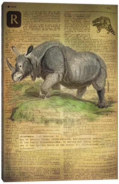 R - Rhino Canvas Art Print