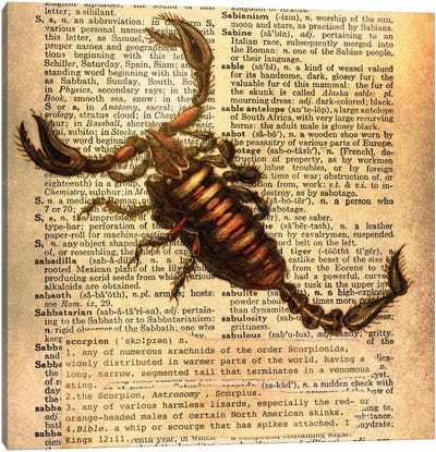 S - Scorpion Square Canvas Print #AALP37