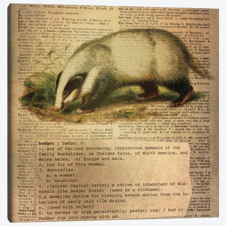 B - Badger Square Canvas Print #AALP3} by 5by5collective Canvas Print