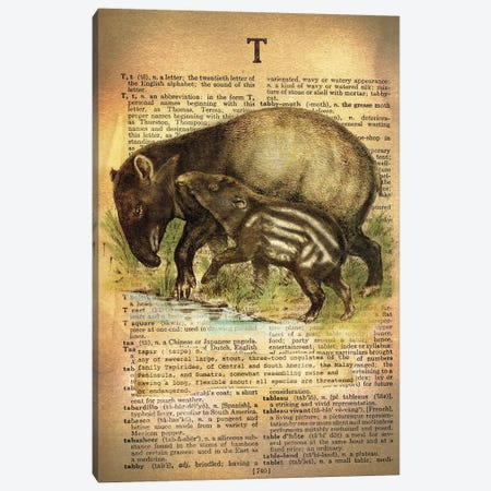 T - Tapir Canvas Print #AALP40} by 5by5collective Canvas Artwork