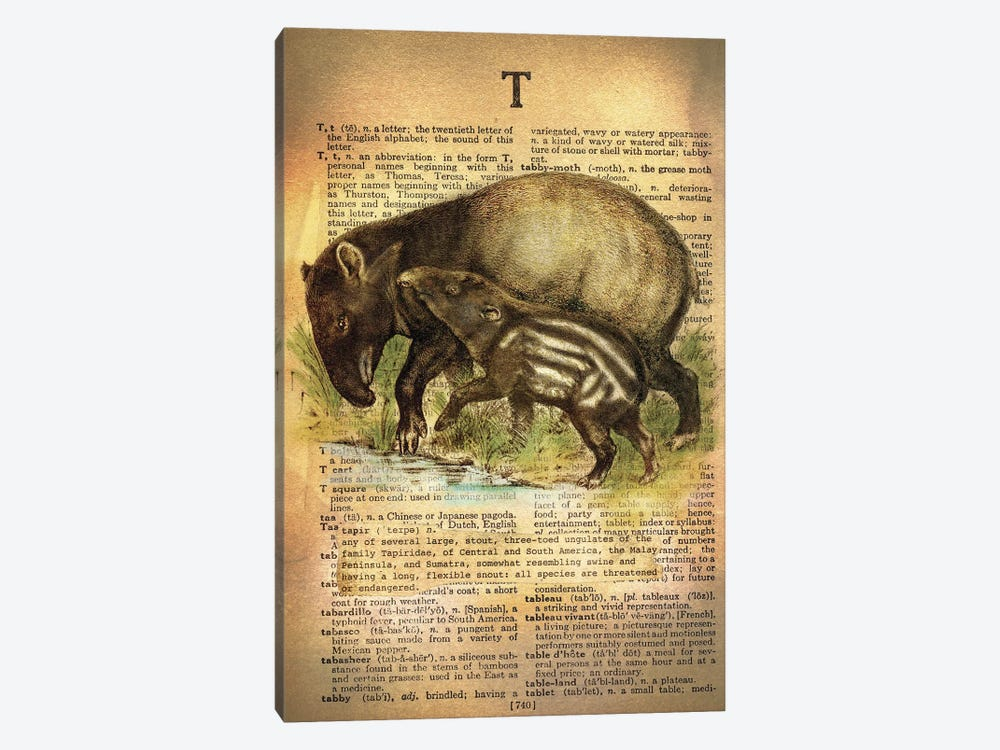 T - Tapir by 5by5collective 1-piece Canvas Art