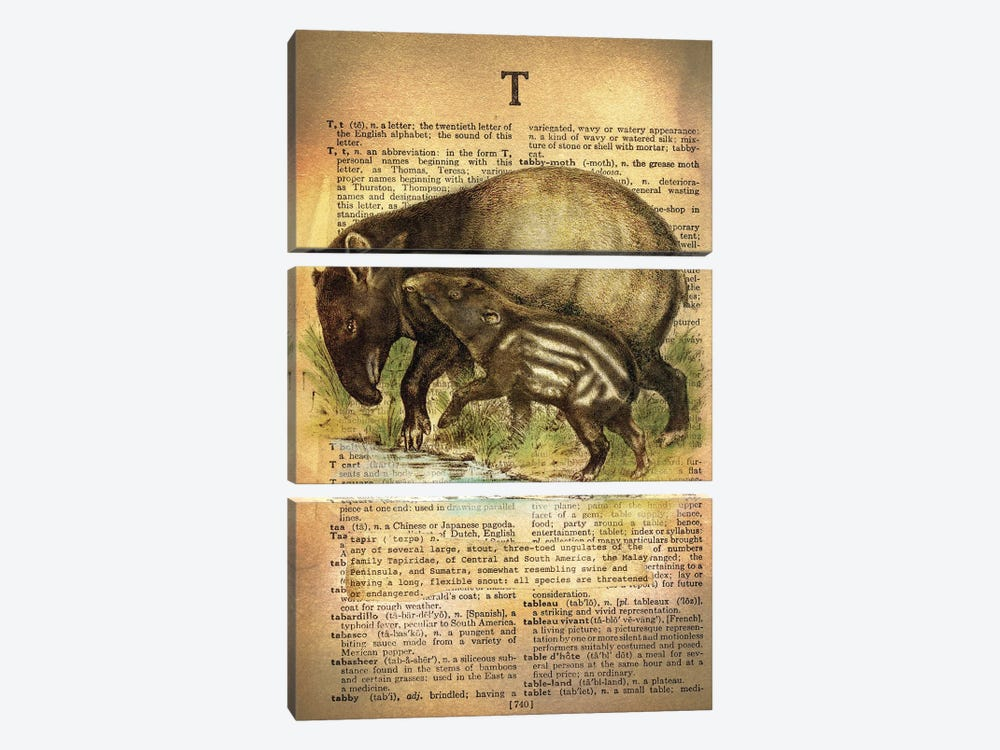 T - Tapir by 5by5collective 3-piece Canvas Artwork