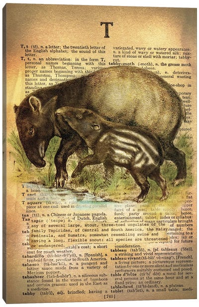 T - Tapir Canvas Art Print