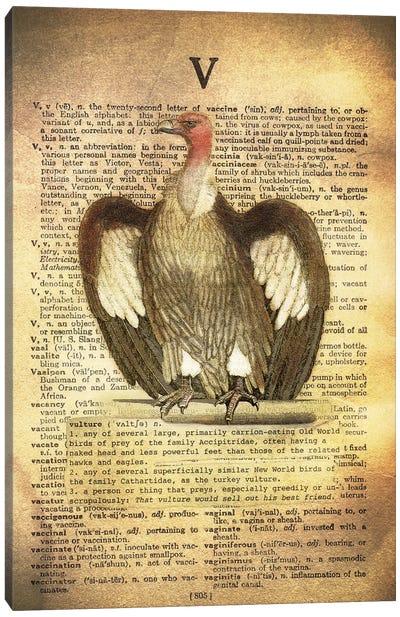 V - Vulture Canvas Art Print