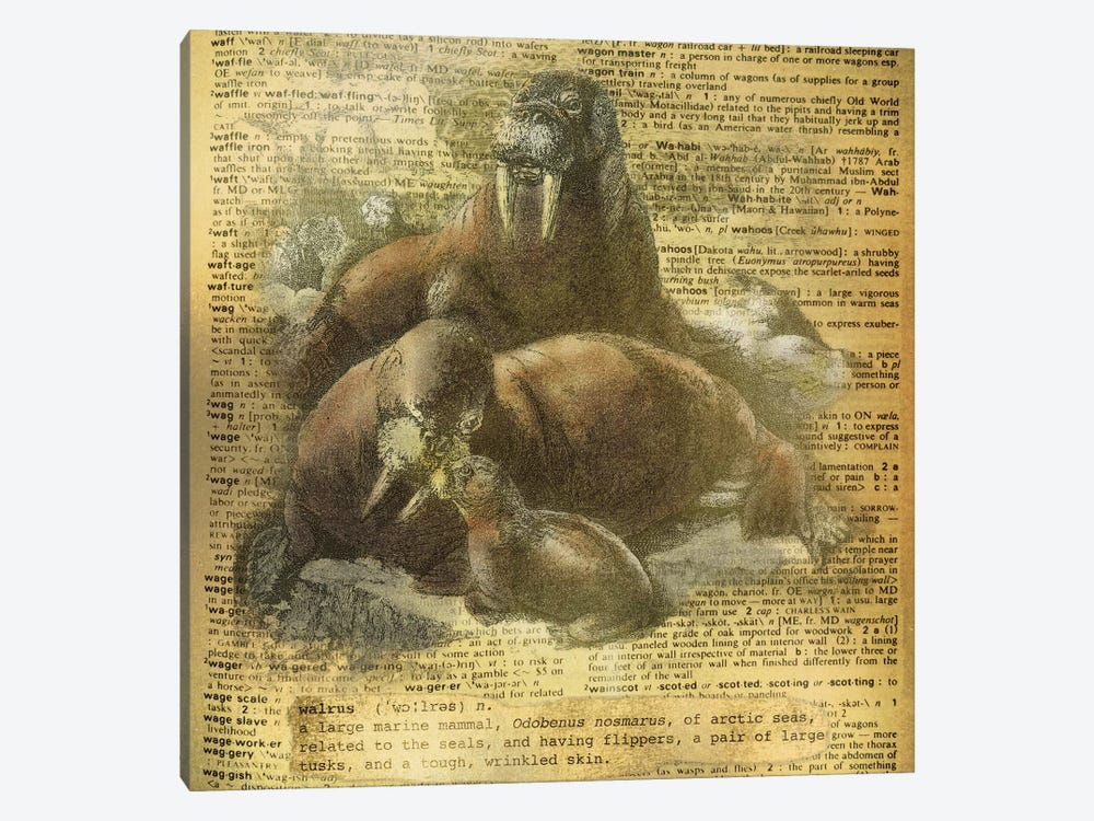 W - Walrus Square by 5by5collective 1-piece Canvas Print