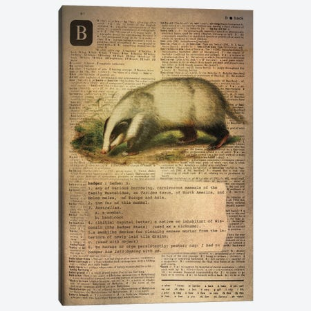 B - Badger Canvas Print #AALP4} by 5by5collective Canvas Wall Art