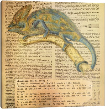 C - Chameleon Square Canvas Art Print