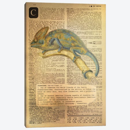 C - Chameleon Canvas Print #AALP6} by 5by5collective Canvas Wall Art