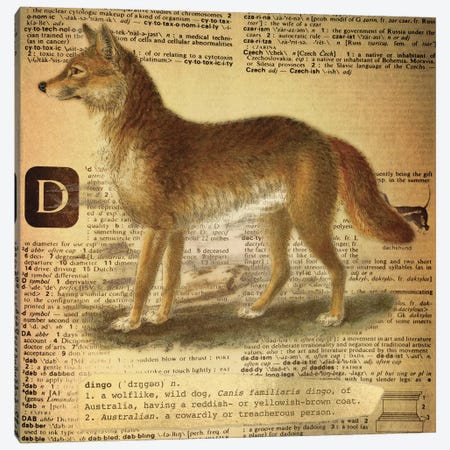 D - Dingo Square Canvas Print #AALP7} by 5by5collective Canvas Art