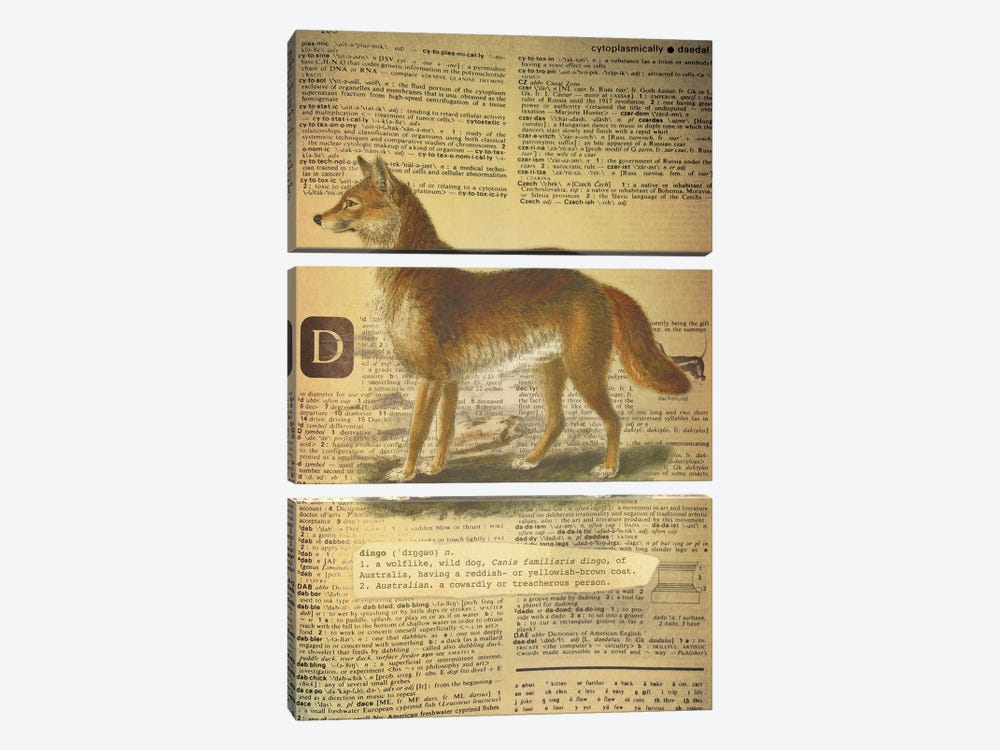 D - Dingo by 5by5collective 3-piece Canvas Art