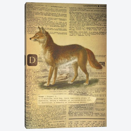 D - Dingo Canvas Print #AALP8} by 5by5collective Canvas Art Print