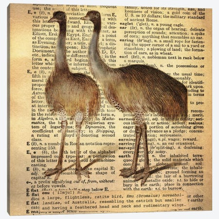 E - Emu Square Canvas Print #AALP9} by 5by5collective Canvas Print