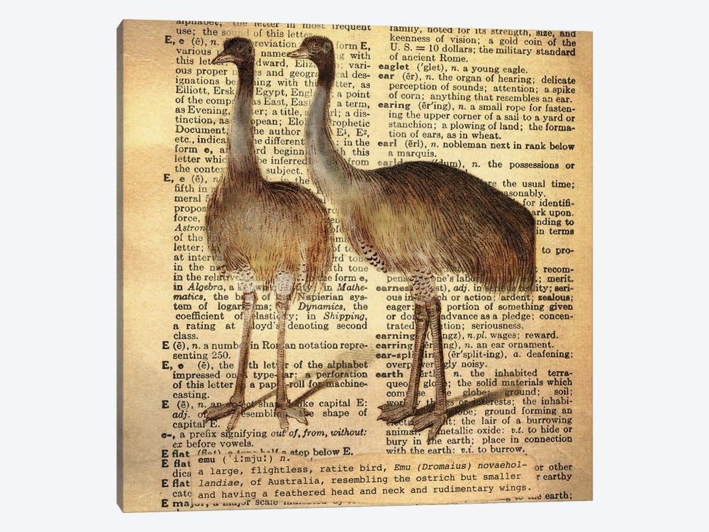 E - Emu Square by 5by5collective 1-piece Canvas Art Print