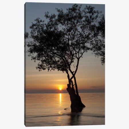 Sunset Silhouette Canvas Print #AAM10} by Aaron Matheson Canvas Art