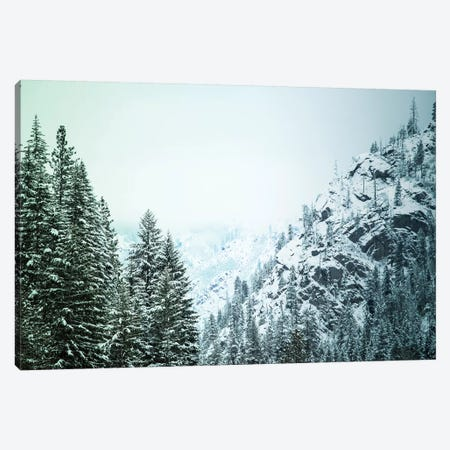 Snowfall in Cascadia II Canvas Print #AAM5} by Aaron Matheson Canvas Print