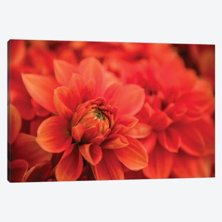 Spring Fire Canvas Print #AAM7} by Aaron Matheson Canvas Art Print