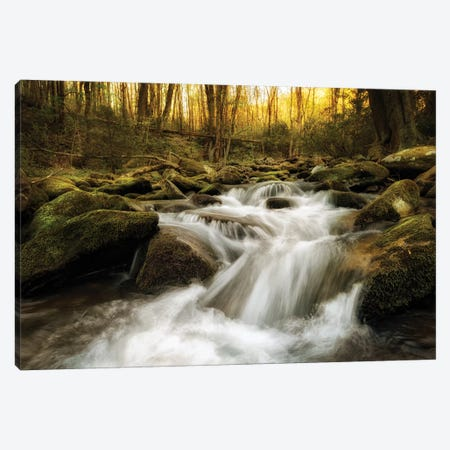 Roaring Fork Canvas Print #AAS14} by Andy Amos Art Print
