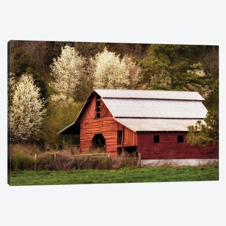 Skylight Red Barn Canvas Print #AAS16} by Andy Amos Canvas Art Print