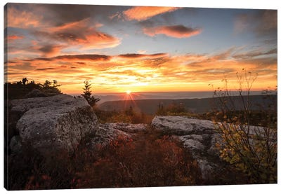 Sunrise in Fall I Canvas Art Print