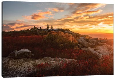 Sunrise in Fall II Canvas Art Print