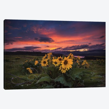 Sunset at the Gorge Canvas Print #AAS21} by Andy Amos Canvas Art Print