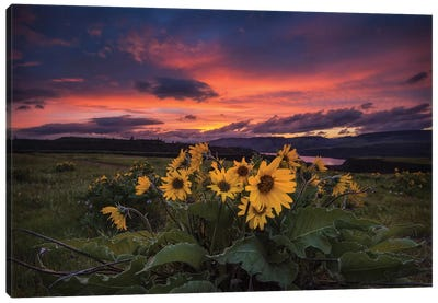 Sunset at the Gorge Canvas Art Print