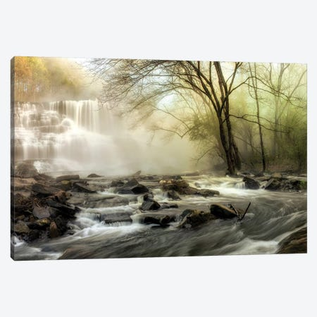 Waterfall Creek Canvas Print #AAS24} by Andy Amos Canvas Artwork