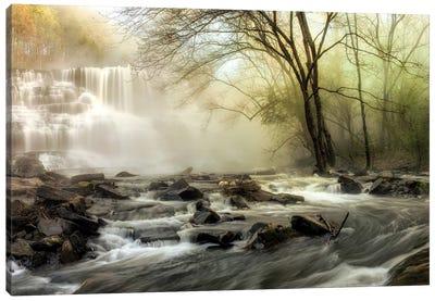 Waterfall Creek Canvas Art Print