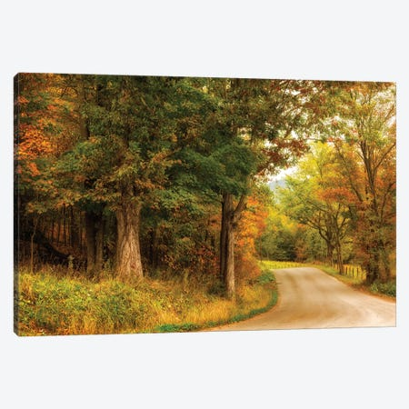 Autumn's First Day Canvas Print #AAS27} by Andy Amos Canvas Wall Art