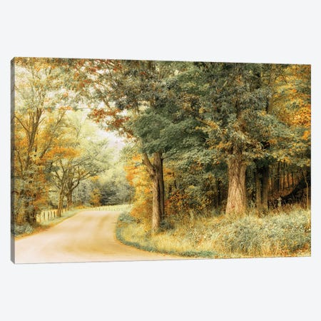 Crisp Season Canvas Print #AAS28} by Andy Amos Art Print