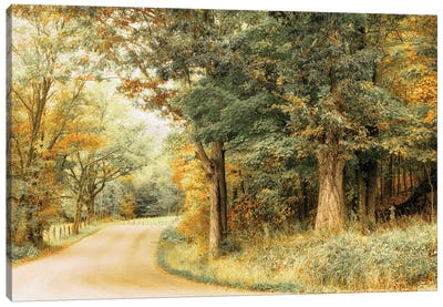 Crisp Season Canvas Art Print
