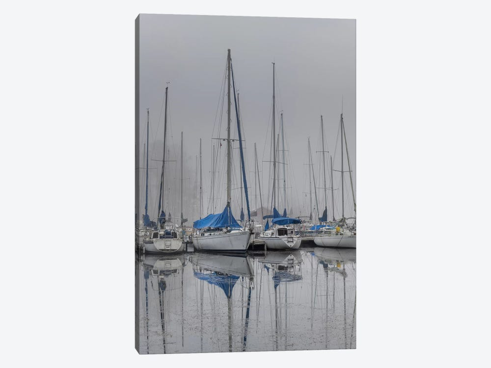 Sailing Boats by Andy Amos 1-piece Canvas Art