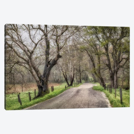 Late Afternoon Walk Canvas Print #AAS39} by Andy Amos Canvas Art