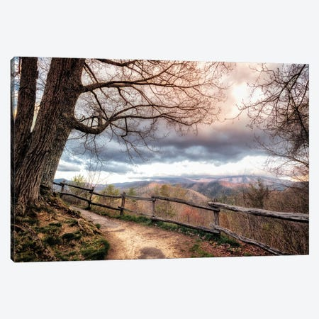 Mountain Walks Canvas Print #AAS43} by Andy Amos Canvas Art Print