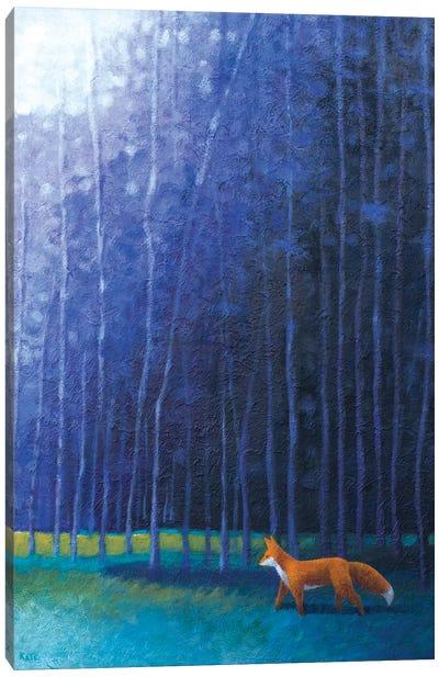 Frankies Twilight Stroll Canvas Art Print