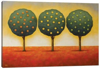 Lemon Lime And Orange Canvas Art Print