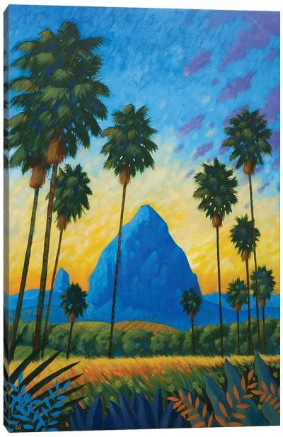 Mount Tibrogargan I Canvas Art Print