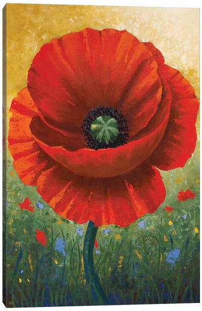 Red Poppy Canvas Art Print