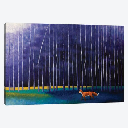 Twilight Stroll Canvas Print #AAW68} by Anvil Artworks Canvas Print