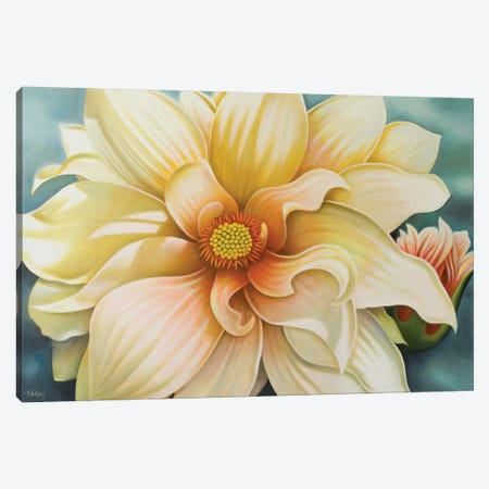 White Dahlia Canvas Print #AAW71} by Anvil Artworks Canvas Artwork